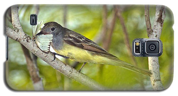 Great Crested Flycatcher Galaxy S5 Case by Anthony Mercieca