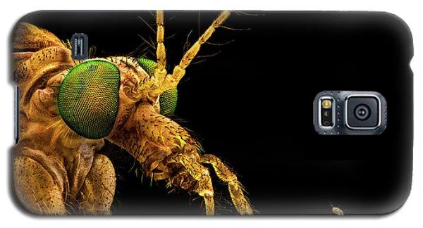 Green Eyed Crane Fly Galaxy S5 Case