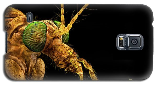 Green Eyed Crane Fly Galaxy S5 Case