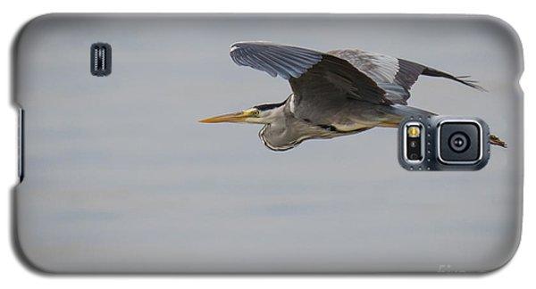 Grey Heron Galaxy S5 Case by Jivko Nakev