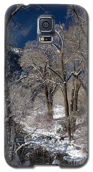 Grizzly Creek Galaxy S5 Case