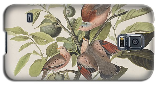 Ground Dove Galaxy S5 Case by John James Audubon