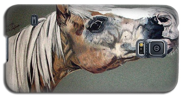 Galaxy S5 Case featuring the drawing Haflinger by Melita Safran