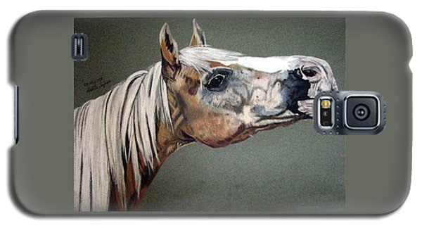 Haflinger Galaxy S5 Case by Melita Safran