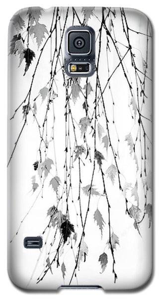 Galaxy S5 Case featuring the photograph Hanging by Rebecca Cozart
