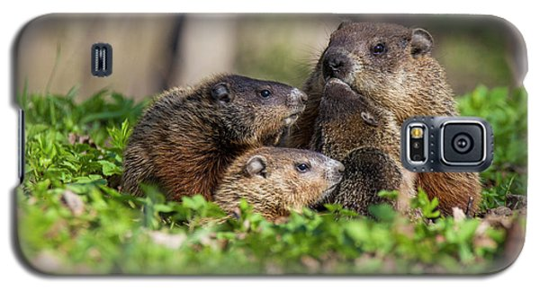 Happy Family Galaxy S5 Case by Mircea Costina Photography