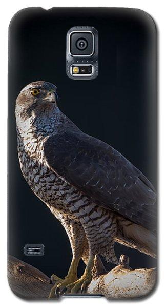 Hawk-eye Galaxy S5 Case