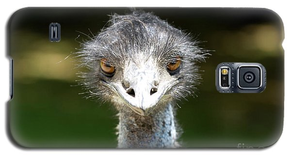 Head Of Ostrich Galaxy S5 Case by Patricia Hofmeester