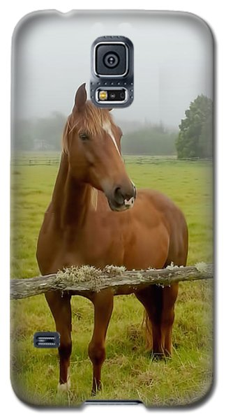 Hello There Galaxy S5 Case