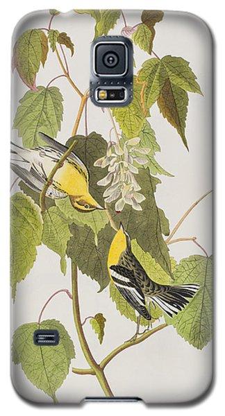 Hemlock Warbler Galaxy S5 Case by John James Audubon