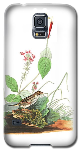 Henslow's Bunting  Galaxy S5 Case by John James Audubon