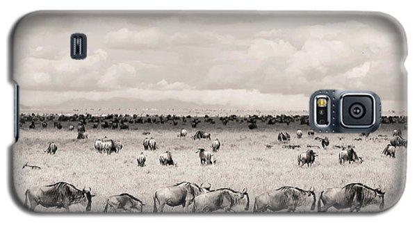 Herd Of Wildebeestes Galaxy S5 Case