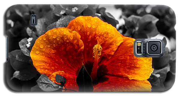 Hibiscus Beauty Galaxy S5 Case