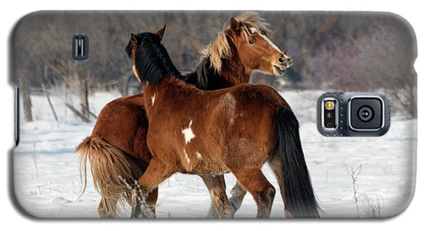 Galaxy S5 Case featuring the photograph Horseplay by Mike Dawson