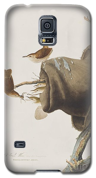 House Wren Galaxy S5 Case by John James Audubon