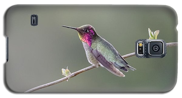 Galaxy S5 Case featuring the photograph Serene by Kathy King