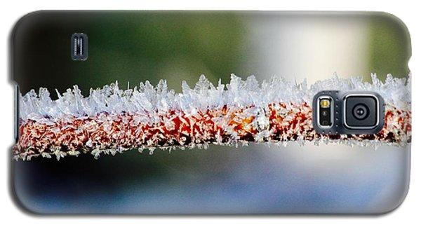 Ice Crystals Galaxy S5 Case by Tiffany Erdman