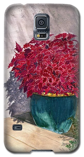 Galaxy S5 Case featuring the painting In The Morning by Melly Terpening