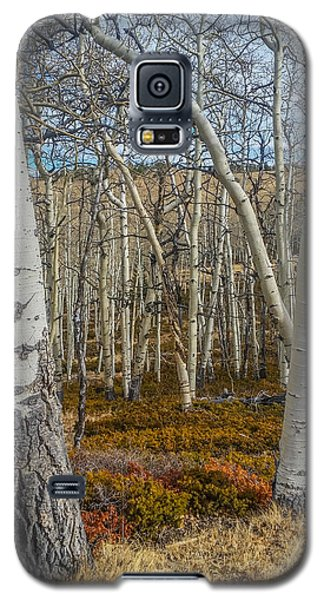 Into The Trees Galaxy S5 Case