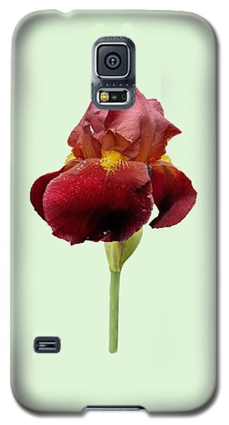 Galaxy S5 Case featuring the photograph Iris Vitafire Green Background by Paul Gulliver