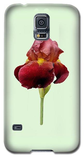 Iris Vitafire Green Background Galaxy S5 Case