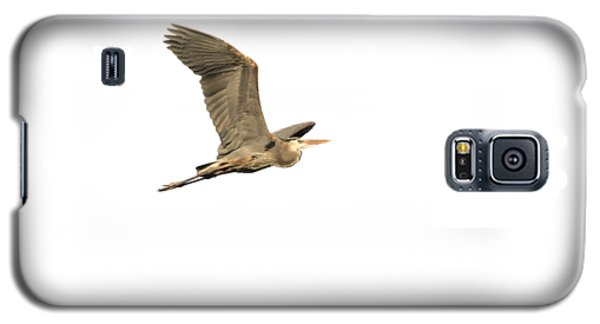 Isolated Great Blue Heron 2015-5 Galaxy S5 Case by Thomas Young