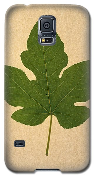 Galaxy S5 Case featuring the photograph Italian Honey Fig Leaf by Frank Wilson
