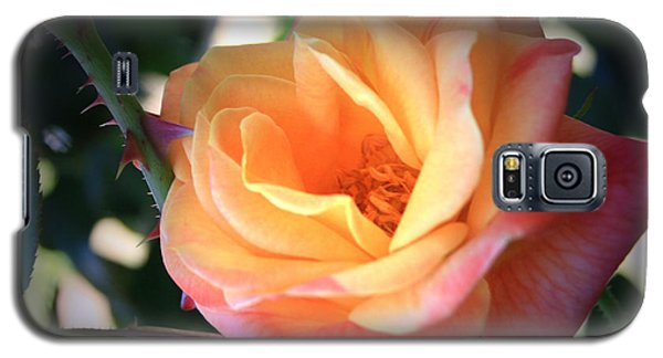 Galaxy S5 Case featuring the photograph Jacob's Rose by Marna Edwards Flavell