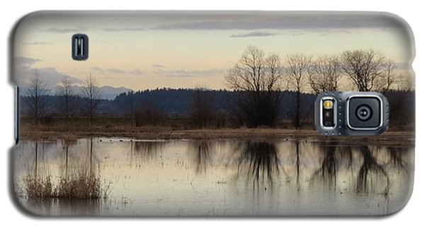 January Thaw 2 Galaxy S5 Case