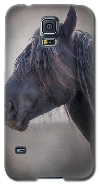 Galaxy S5 Case featuring the photograph Jay by Debby Herold