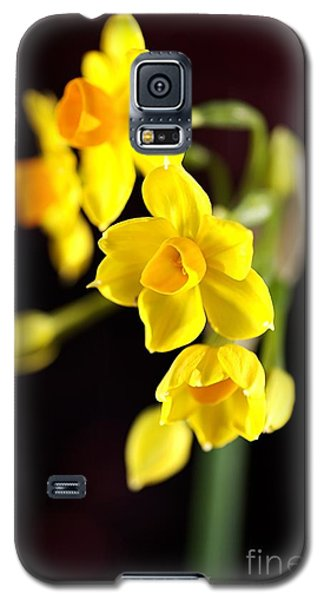 Jonquil Galaxy S5 Case
