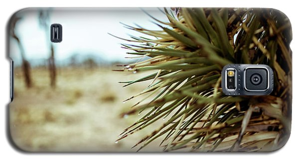 Joshua Tree Galaxy S5 Case