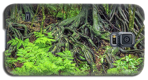 Galaxy S5 Case featuring the photograph Jungle Roots by Les Cunliffe