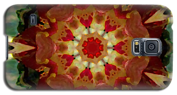 Kaleidoscope - Warm And Cool Colors Galaxy S5 Case