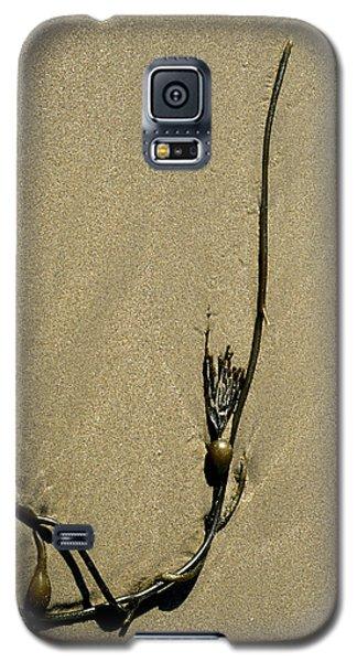 Kelp 1 Galaxy S5 Case by Art Shimamura