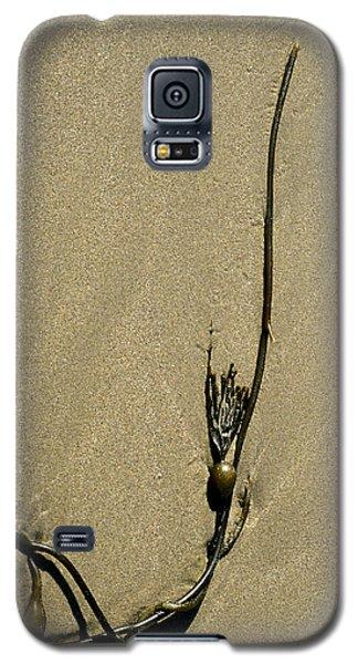 Kelp 1 Galaxy S5 Case