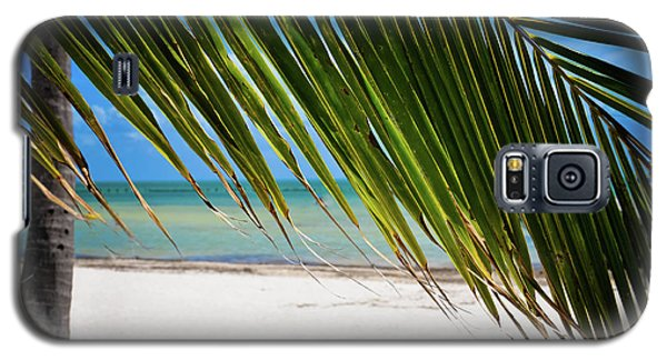 Galaxy S5 Case featuring the photograph Key West Palm by Kelly Wade