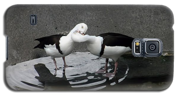 Kissing Ducks Galaxy S5 Case