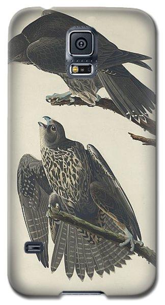Labrador Falcon Galaxy S5 Case by Rob Dreyer