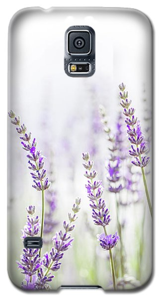 Galaxy S5 Case featuring the photograph Lavender Flower In The Garden,park,backyard,meadow Blossom In Th by Jingjits Photography