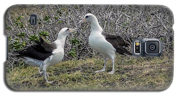 Laysan Albatross Hawaii #2 Galaxy S5 Case