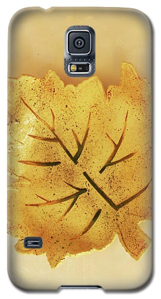 Galaxy S5 Case featuring the photograph Leaf Plate2 by Itzhak Richter
