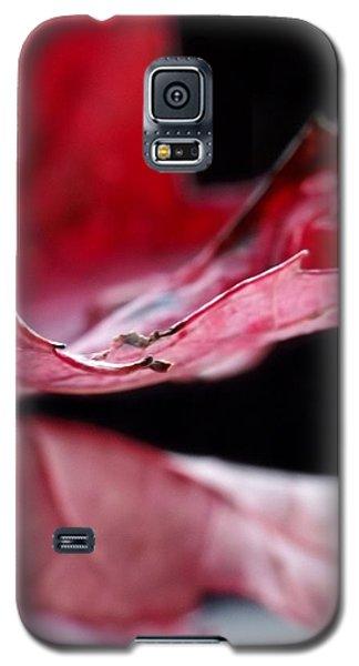 Leaf Study V Galaxy S5 Case
