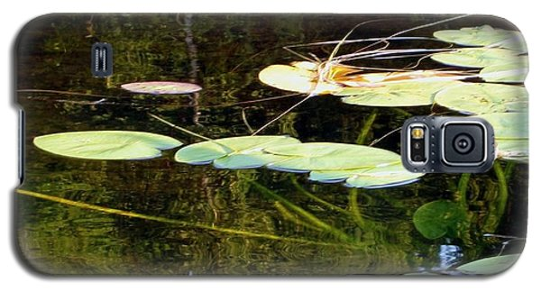 Lily Pads On The Lake Galaxy S5 Case