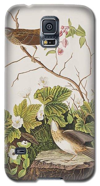Lincoln Finch Galaxy S5 Case