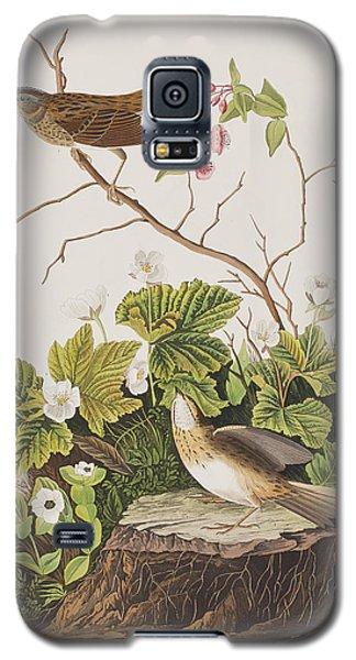 Lincoln Finch Galaxy S5 Case by John James Audubon