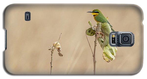 Little Bee-eater Galaxy S5 Case