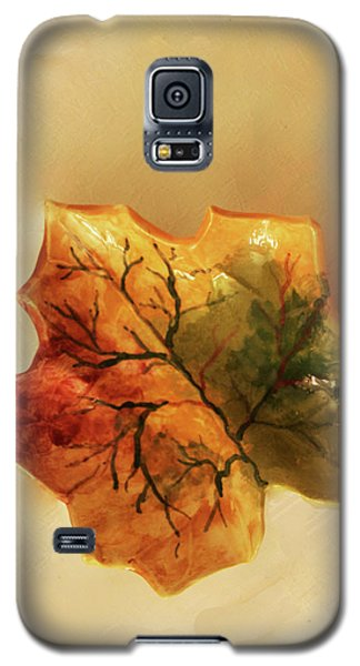 Galaxy S5 Case featuring the photograph Little Leif Dish by Itzhak Richter