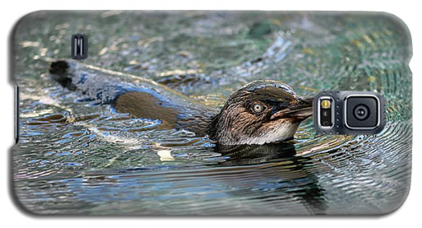 Little Penguin In The Water Galaxy S5 Case