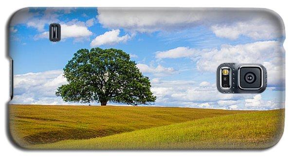 Lone Oak Galaxy S5 Case